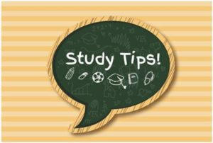 9 Best Tips To Study Human Anatomy For Medical Students and Allied ...
