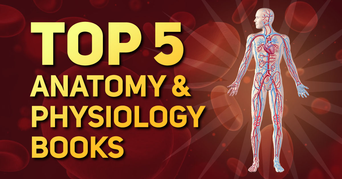 Best Top 5 Anatomy & Physiology Books for Medical Students - Med